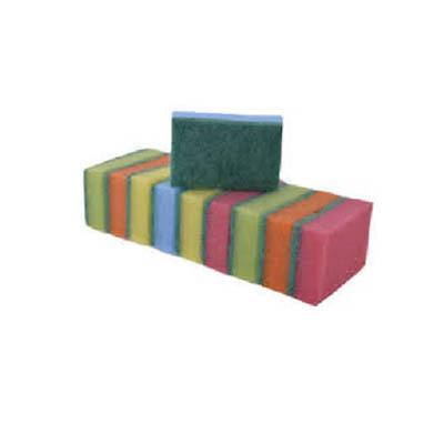 Spontex - 10  Eponges couleurs
