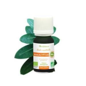 Actiflora - Huile essentielle Eucalyptus Globulus Bio - 10ml