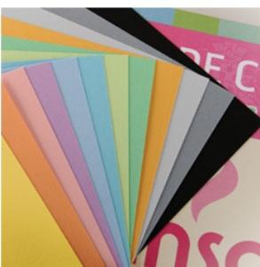 CANSON-Papier à dessin couleur 12 feuilles 150g
